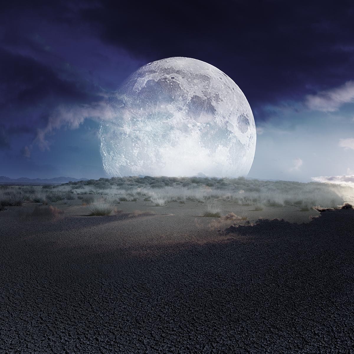 alice zilberberg black sunset
