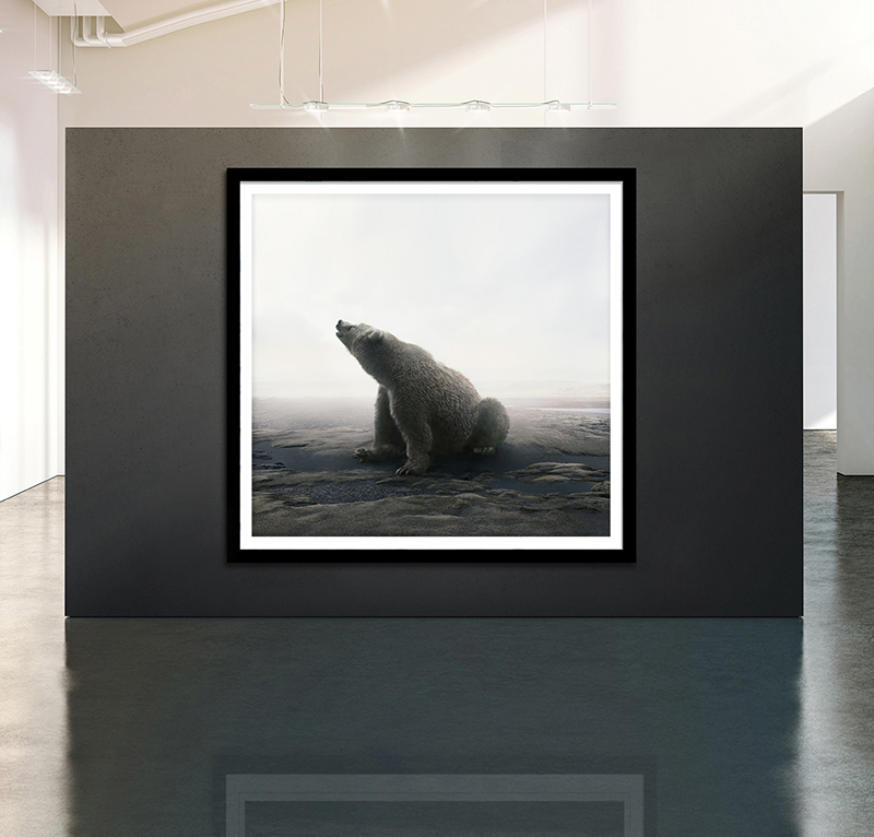 animal art photography