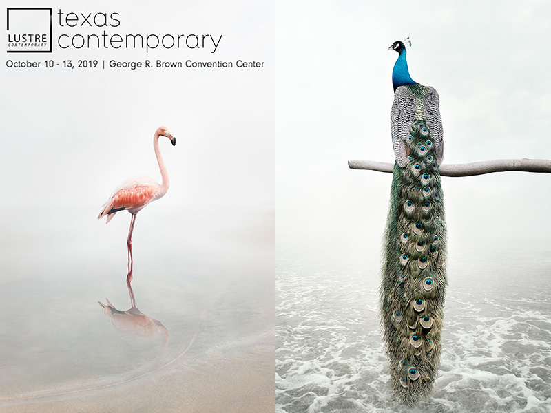 texas contemporary 2019 lustre gallery